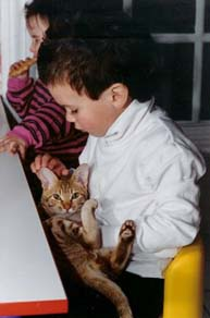 Cats that are good with Children